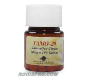 Tamo-20 for sale | Tamoxifen Citrate 20 mg x 100 tablets | Global Anabolics