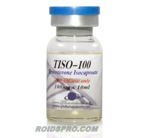 Tiso-100 for sale | Testosterone Isocaproate 100 mg/ml x 10ml Vial | Global Anabolic