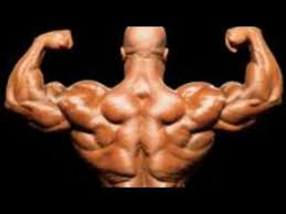 Best HGH's (Human Growth Hormone) for sale online - roidspro com