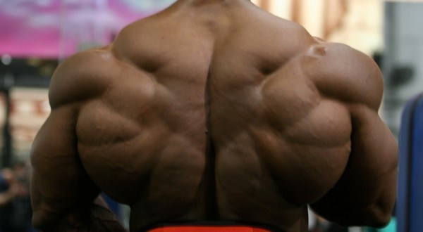 Buy real bulking steroids online